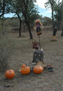 stump spirit 08_0089