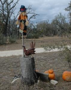 Turkey ScarecrowDSC_0096