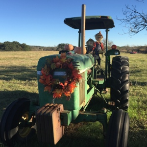 Who are those strange straw people driving the Thanksgiving-decorated tractor?